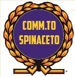 COMM.TO SPINACETO 15